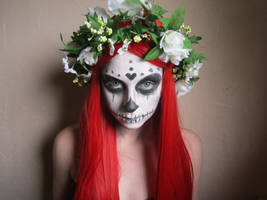Skull 3 by Fluffybunny29stock