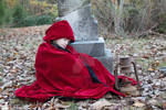 Little red riding hood Premium stock 7