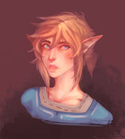 Drawing Link without Lineart by DeerCub