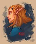 Princess Zelda [BotW Sequel] Head Shot