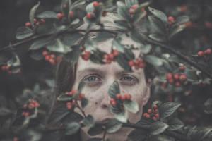 berry by zazielona
