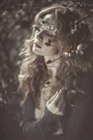 wild rose... by zazielona