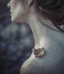 leaf... by zazielona