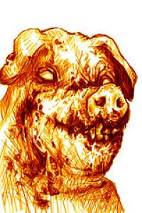 Swinec's Profile Picture