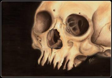 Oil Skull by Metalhead99