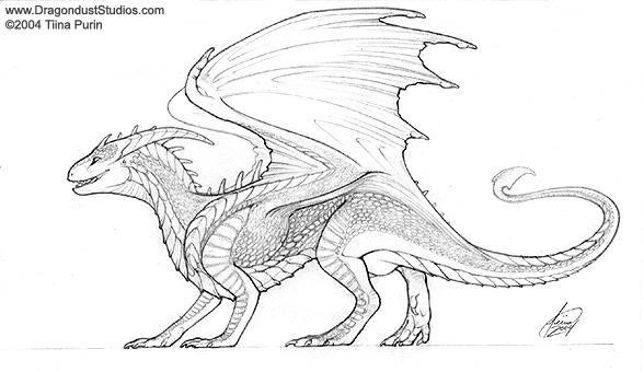 how to draw a european dragon