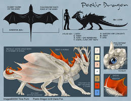 Poetic Dragon Model Sheet by mirroreyesserval