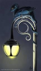 A Shiny Perch by mirroreyesserval