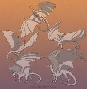 Pern Dragons - Adults set