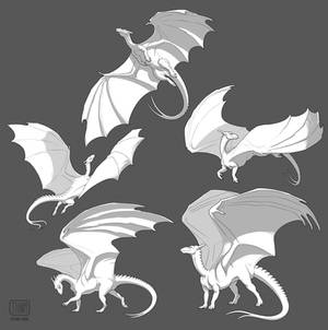 Pern Dragons 3 of 3 - Adults
