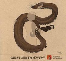 Perfect Pet Hero Challenge