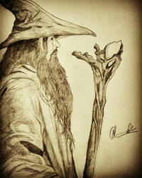 Gandalf The grey by Aniket1223