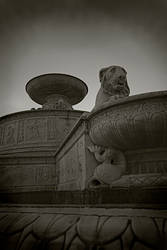 Fountain Lion Redux by guessimdoinfine