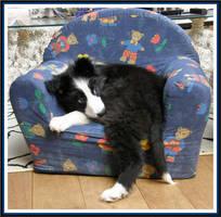...my chair... by floriaiglenoir