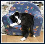 ...my chair...