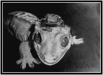 ...Gecko Lovies ... by floriaiglenoir
