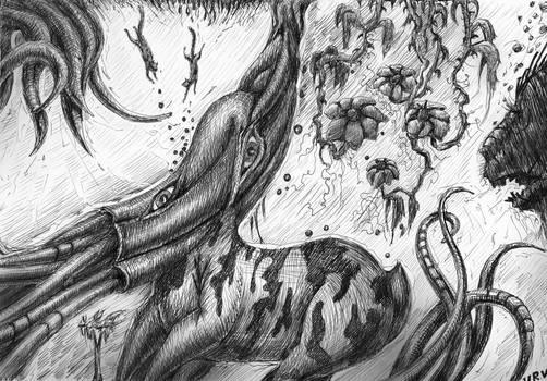 Roe-cuttlefish