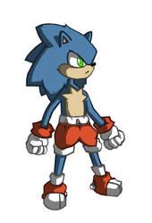 Slightly Older Sonic?