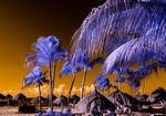 Caribbean Views 3 by robpolder