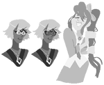 assorted ace attornies
