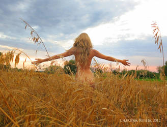 August freedom by shakis