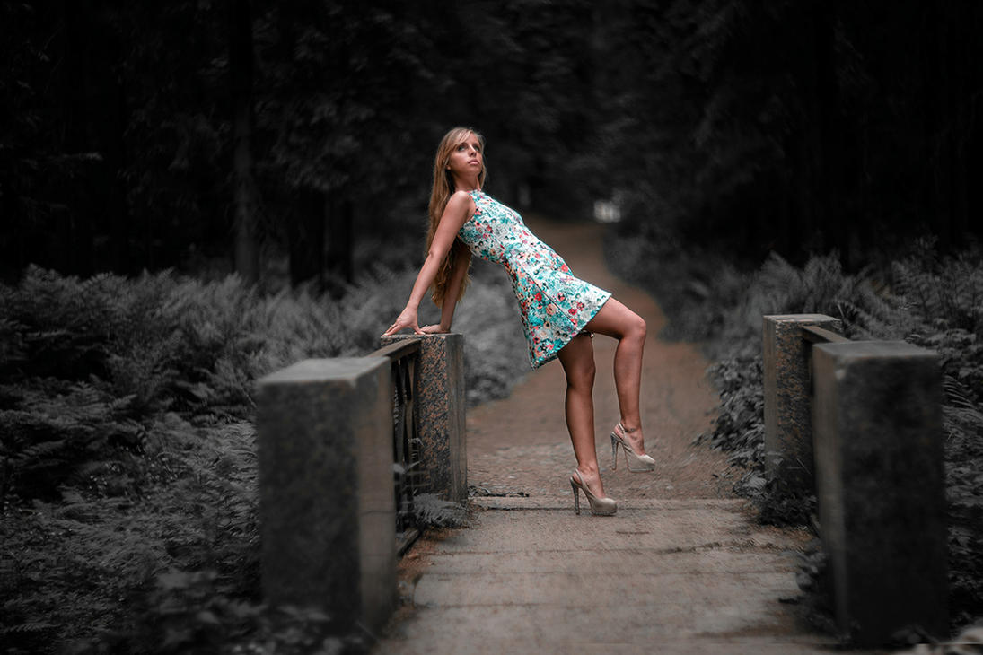 Alone on the bridge by shakis