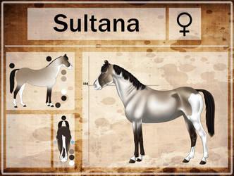 Sultana - Reference Sheet by Pepuli