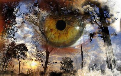 Fire Eye by CoryAmedia