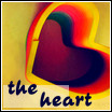 Colourful heart by anjali95