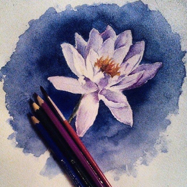 watercolor flowers by DariaKuznetsova