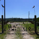 new gate for the farm