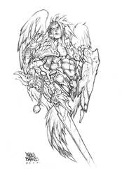 Warrior Angel by paulobarrios