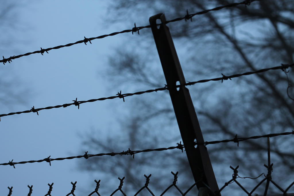 Barbed Wire by Alluringraphy