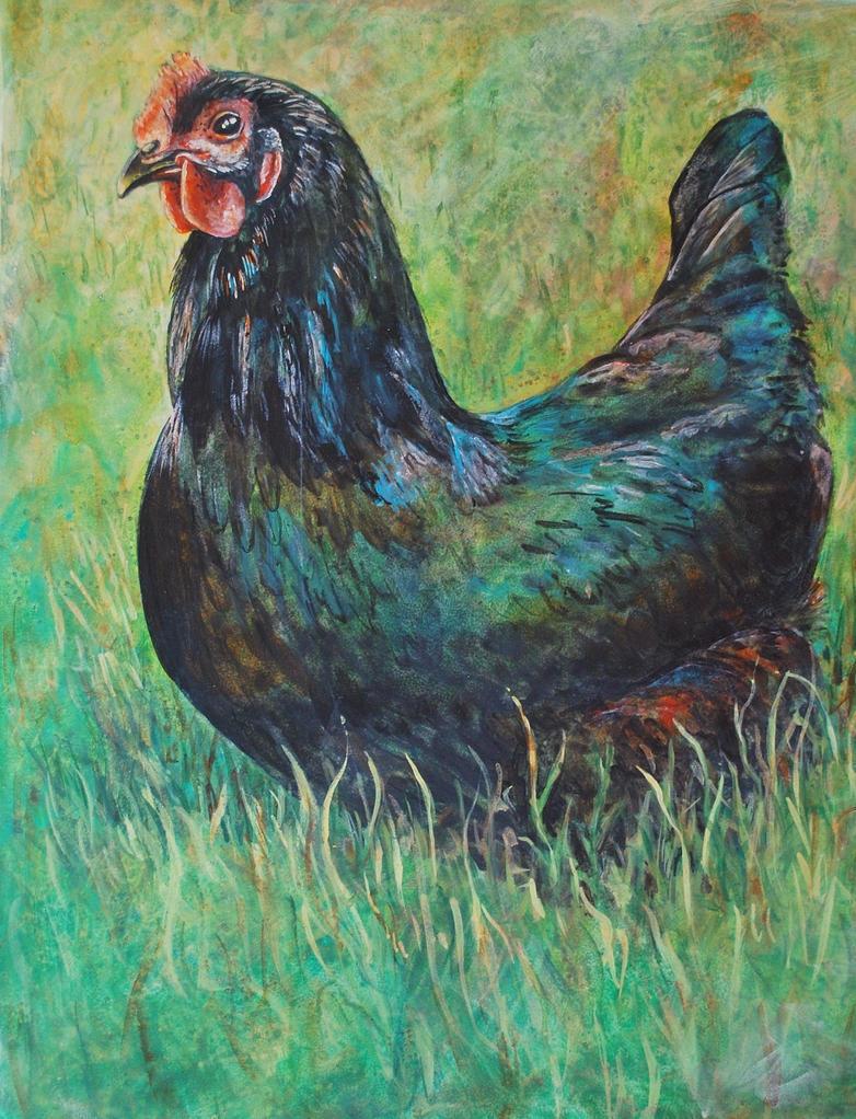 Black Hen by k8lag