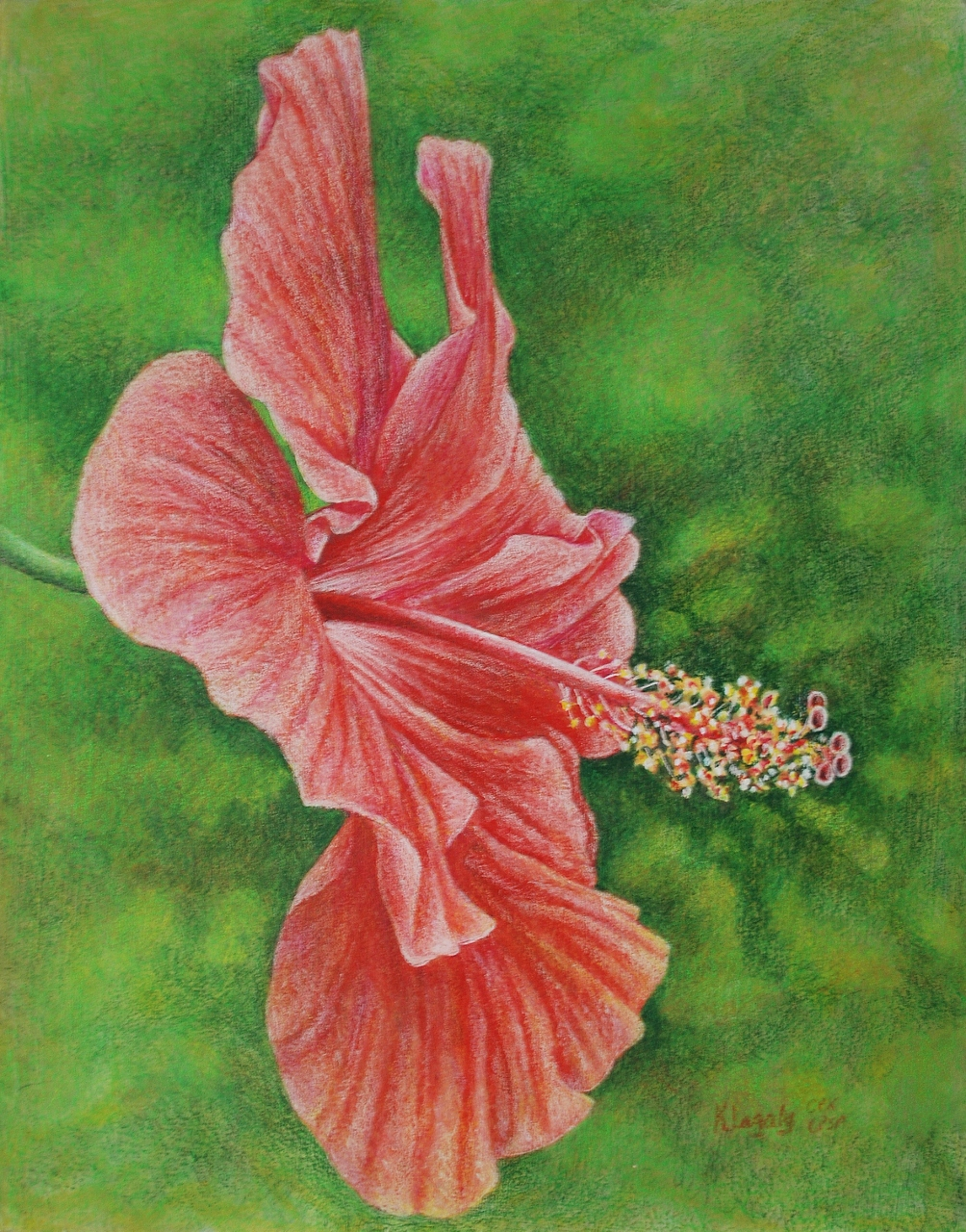 Hibiscus 2 by k8lag