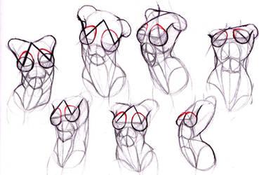 female body study by Tigrobobr