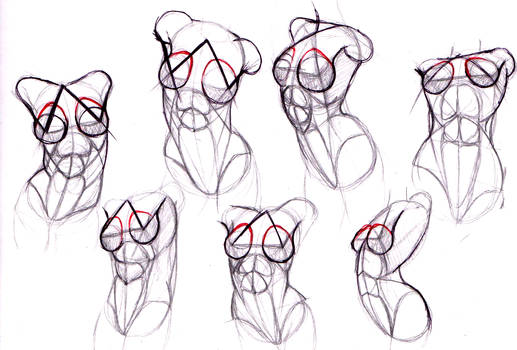 female body study