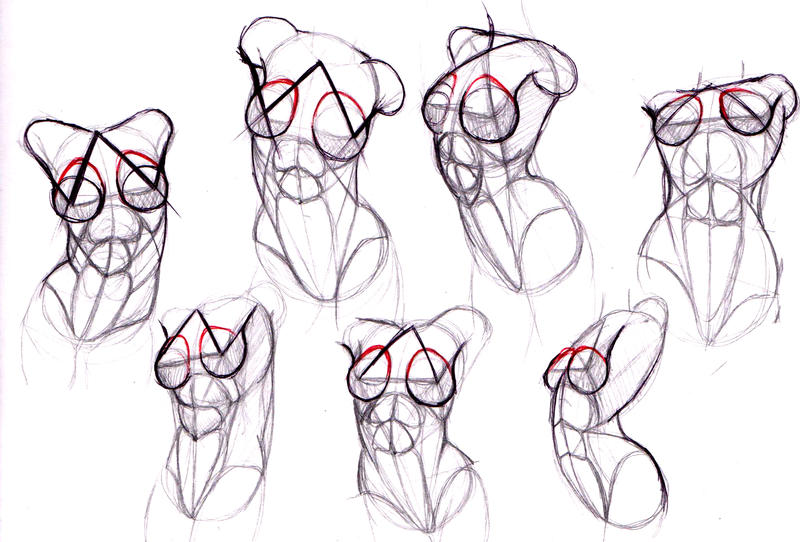 female body study by tigrobobr on deviantart
