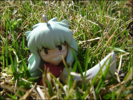 Inuyasha in the Grass by Versa6032