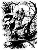 The Black Panther by deankotz