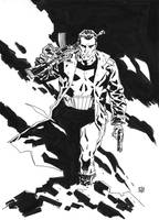 The Punisher by deankotz