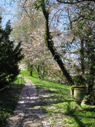 Nature 117 Garden