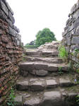 Places 237 stone steps