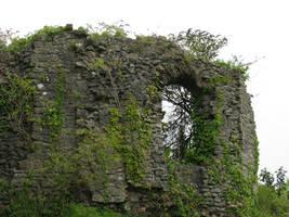 Places 385 castle ruins