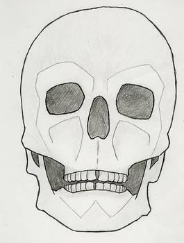 Skeletal Study, Part 2