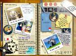 Sasuke's Notebook