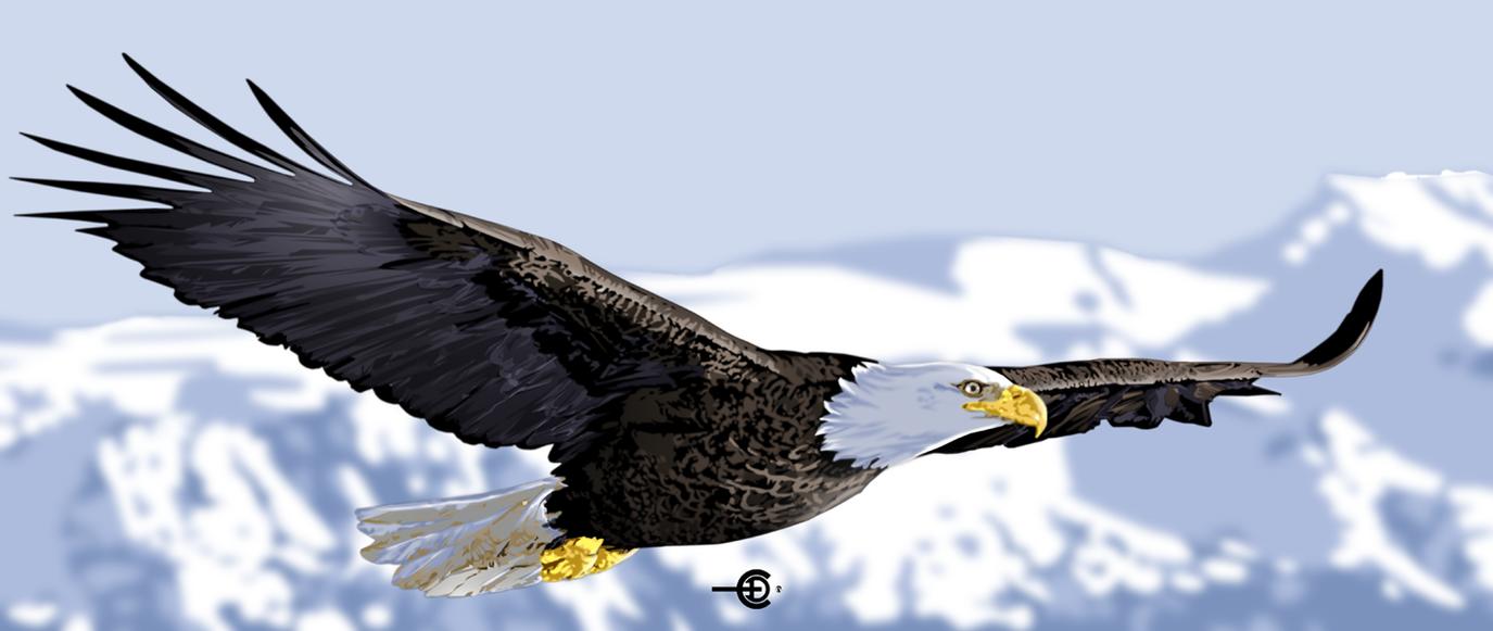 Freedom by ediprata