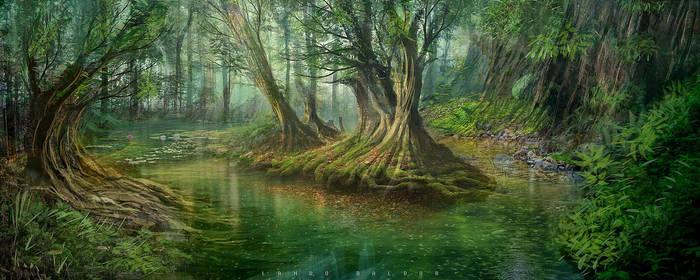 pp swamp