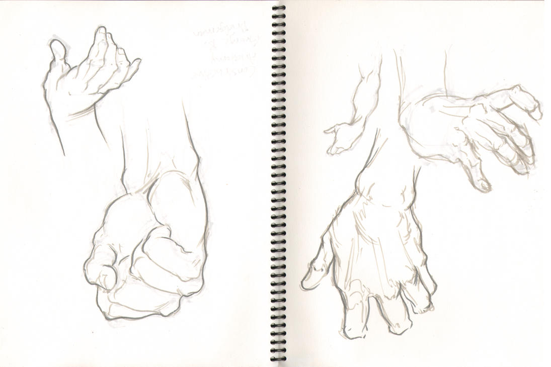 Anatomy Study: Hands by GavinMichelli