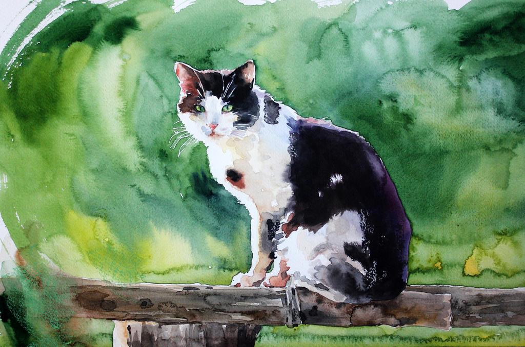 cat1 by ElenaShved
